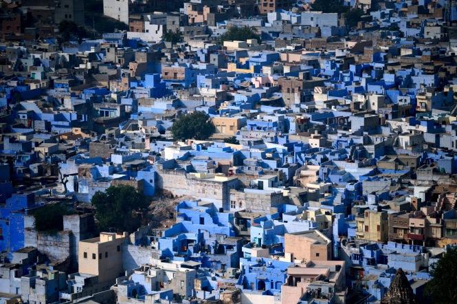 big_1116_jodhpur_the_blue_1